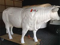 Cow Blonde D'aquitaine (height 150cm)
